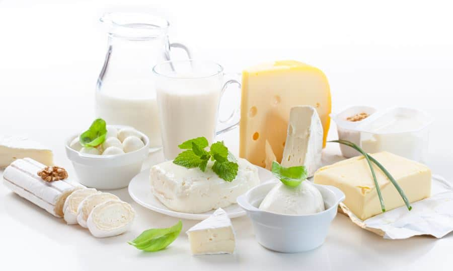 dairy products rich in calcium and good for bariatric bone health